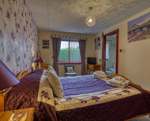 'Thistle' Double Room at Acorn Guest House
